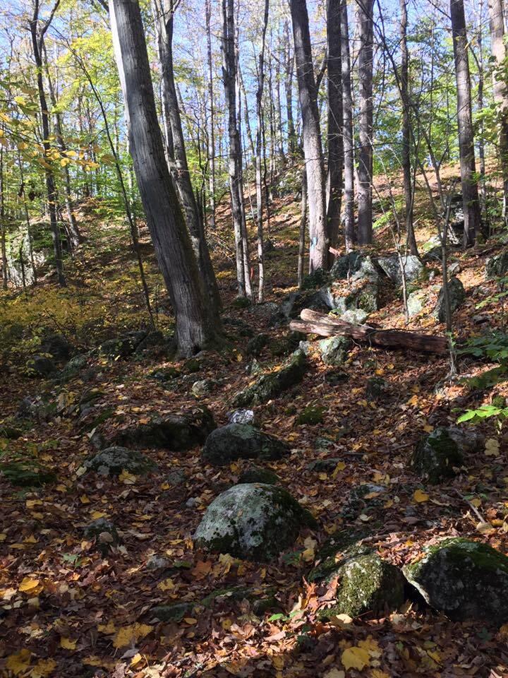 rocky-trail-bimblers